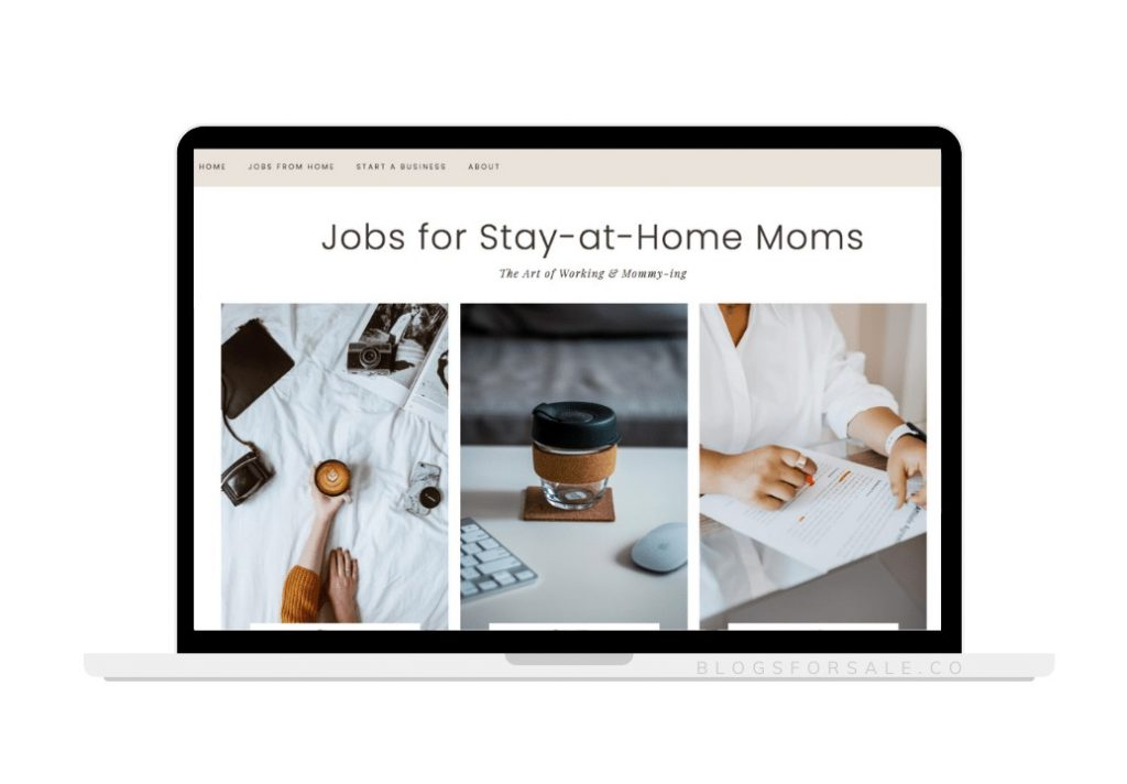 Work-from-home-niche-site-for-sale.png