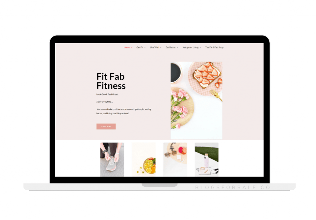 fitness-and-healthy-living-site-for-sale.png